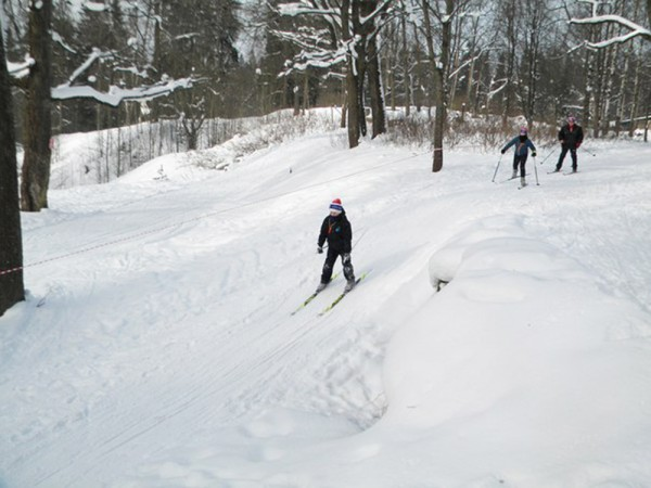 Завершающий этап соревнований по лыжным гонкам