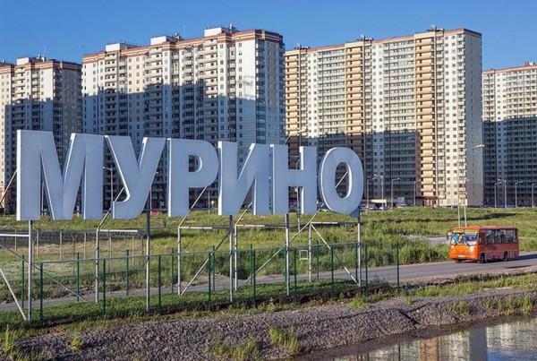 Мурино может получить статус города