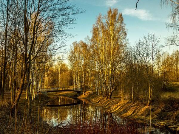 Парки города Всеволожска